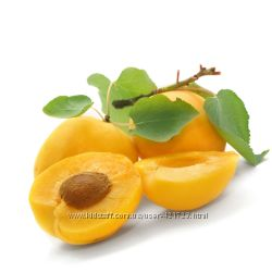 Косметическое чистое масло абрикоса-холодный отжим, Франция.