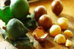 Эксклюзивное масло ореха макадамии натуральное чистое, Южная Африка