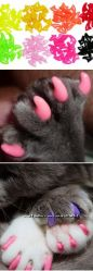 Мягкие коготки антицарапки для кошек и собак