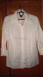 Распродажа  рубашек, блуз , Размер 46-50
