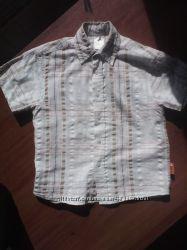 Рубашка PALOMINO для модника