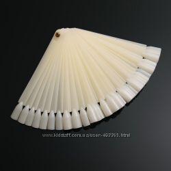 Палитра - веер  на 50 штук, ромашка  набор