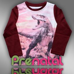 Реглан с тиранозавром для мальчика 3-4 года Prenatal Италия