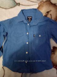 хорошая рубашка Terranova