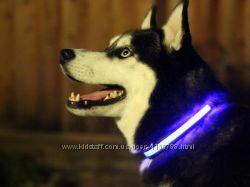 Светодиодный ошейник для собак LED-ошейник для вечерней прогулки