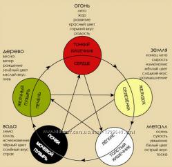 Правильное питание и здоровый образ жизни на основе У-Син и кит. медицины