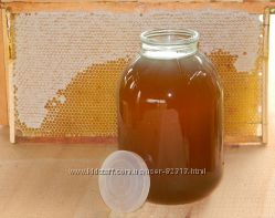Очень вкусный и полезный мед из лесного разнотравья